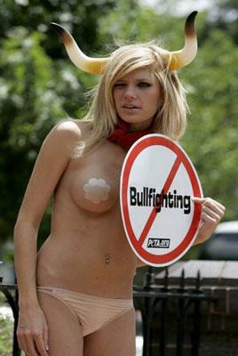 No a las Corridas de toros en Torrevieja