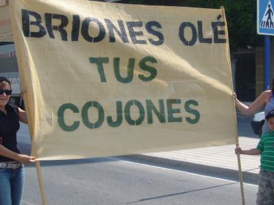 Vecinos de Torremendo y toda la Vega Baja se manifiestan en Orihuela contra la corrupción